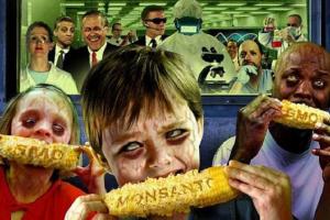 Russia: La Duma introduce una norma che vieta gli OGM