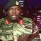 Zimbabwe: Army freezes the Presidency/L'esercito congela la Presidenza